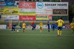 fussball-3318 (Kopie)