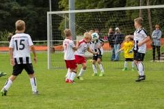 fussball-5261 (Kopie)