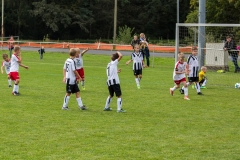 fussball-5267 (Kopie)