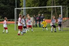 fussball-5278 (Kopie)