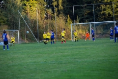 fussball-6530 (Kopie)